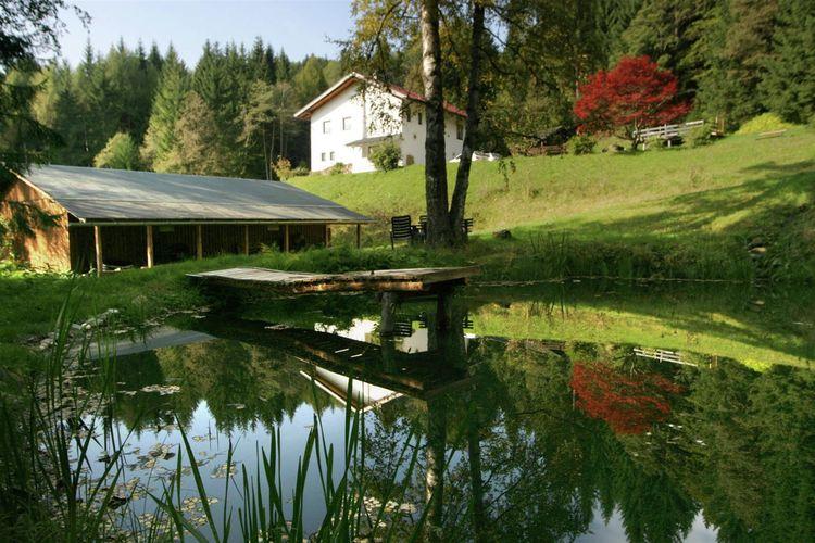 Ferienwohnung Hollinger (226913), Afritz am See, Villach-Land, Kärnten, Österreich, Bild 3