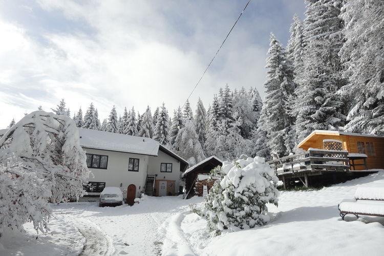 Ferienwohnung Hollinger (226911), Afritz am See, Villach-Land, Kärnten, Österreich, Bild 6