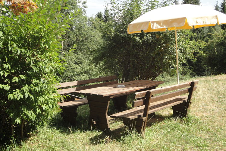 Ferienwohnung Hollinger (226912), Afritz am See, Villach-Land, Kärnten, Österreich, Bild 15