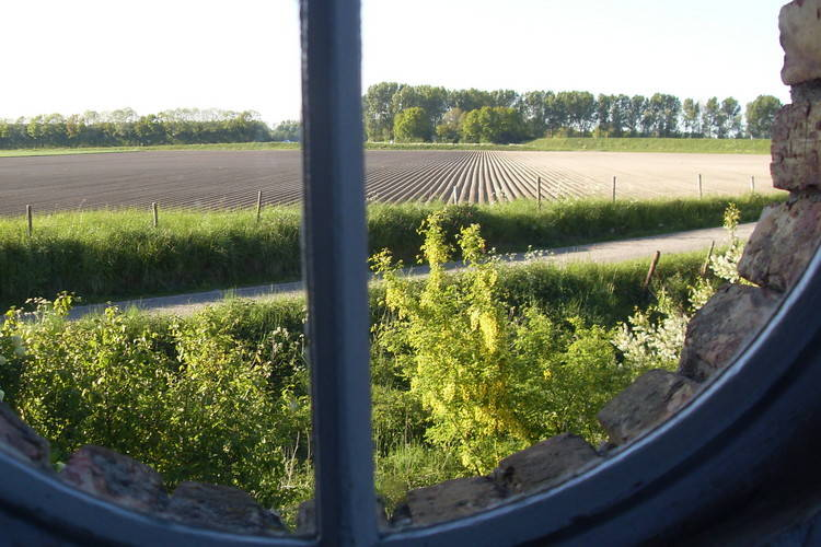 Ferienhaus Vogelschor (226958), Sas van Gent, Zeeuws Vlaanderen, Seeland, Niederlande, Bild 23