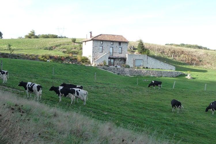 Ferienhaus Maison de vacances - Parlan (255927), Parlan, Cantal, Auvergne, Frankreich, Bild 23