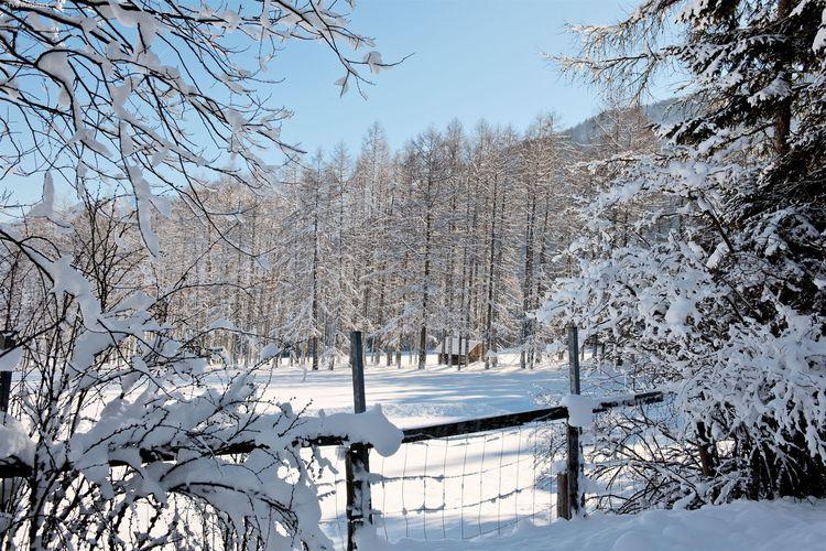 Ferienwohnung Schöpf (236415), Seefeld in Tirol, Seefeld, Tirol, Österreich, Bild 16