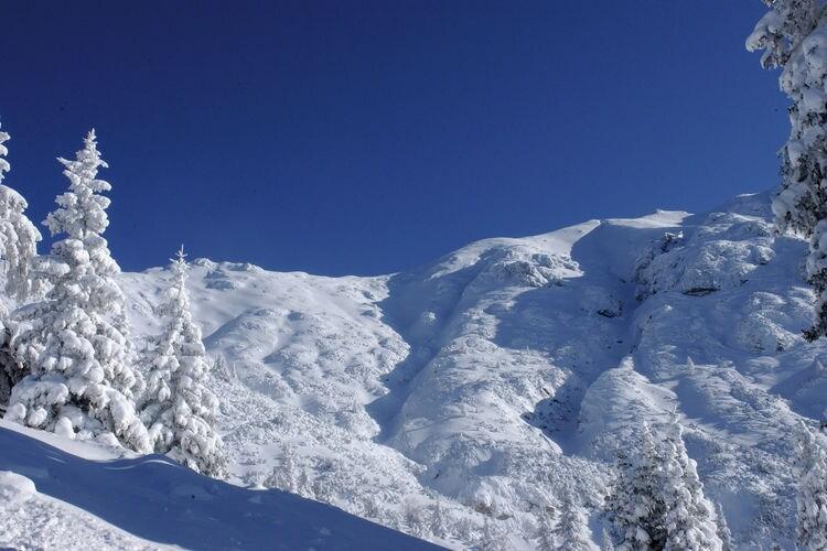 Ferienwohnung Schöpf (236416), Seefeld in Tirol, Seefeld, Tirol, Österreich, Bild 21