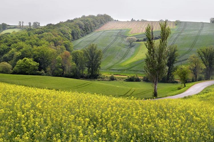 Ferienwohnung Le Hameau du Lac 4 (236723), Marciac, Gers, Midi-Pyrénées, Frankreich, Bild 24