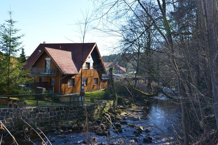Ferienhaus Hexenstieg (242241), Elend, Harz (Sachsen-Anhalt), Sachsen-Anhalt, Deutschland, Bild 2