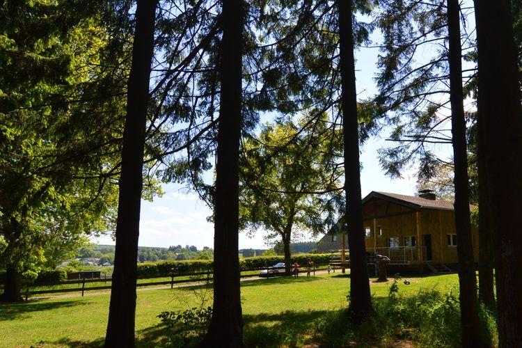 Ferienhaus Le Chevreuil (245486), Hatrival, Luxemburg (BE), Wallonien, Belgien, Bild 28