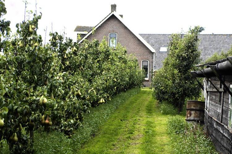 Ferienhaus Licykreken (244578), Wemeldinge, Zuid-Beveland, Seeland, Niederlande, Bild 19