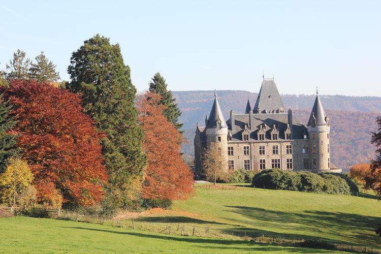 Ferienhaus Les Charmes (250552), Chevron, Lüttich, Wallonien, Belgien, Bild 32