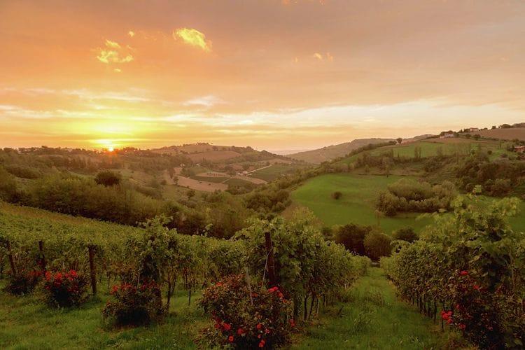 Ferienwohnung Gelsomino (257362), Montecarotto, Ancona, Marken, Italien, Bild 27