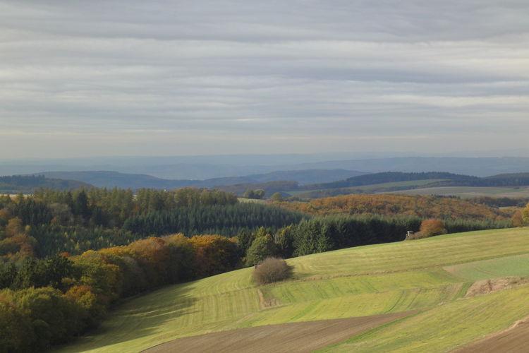Ferienwohnung Kochems (257488), Walhausen, Hunsrück, Rheinland-Pfalz, Deutschland, Bild 29