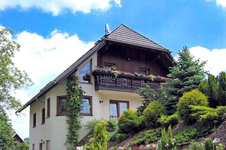 Appartement Duitsland, Saksen, Schwarzenberg OT Pöhla Appartement DE-08340-03