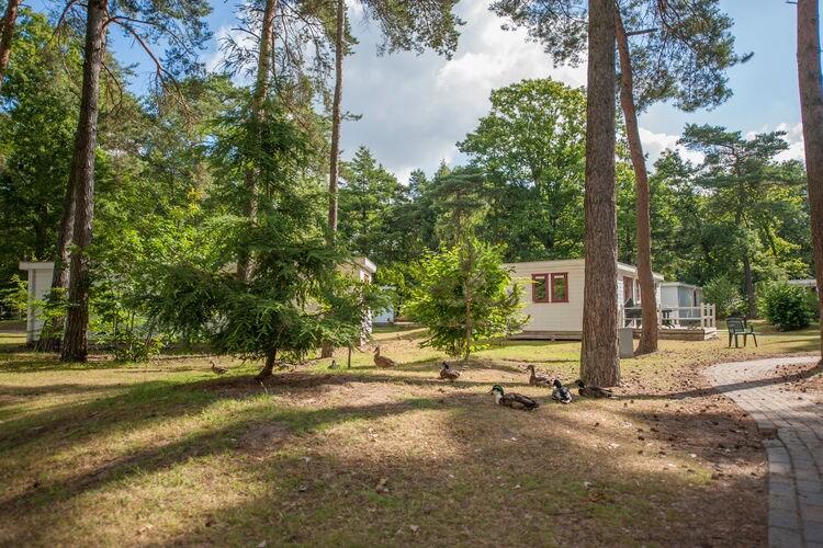 Ferienhaus Bospark 't Wolfsven 4 (264790), Mierlo, , Nordbrabant, Niederlande, Bild 3