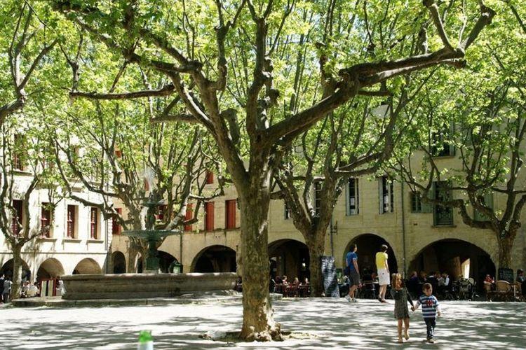 Ferienwohnung Villa Camelia (265482), Arpaillargues et Aureillac, Gard Binnenland, Languedoc-Roussillon, Frankreich, Bild 27