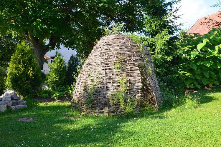 Ferienwohnung Stalter (269984), Hüttenrode, Harz (Sachsen-Anhalt), Sachsen-Anhalt, Deutschland, Bild 26