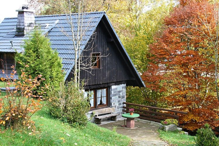 vakantiehuis Duitsland, Baden-Wurttemberg, St. Georgen ot Brigach vakantiehuis DE-78112-01