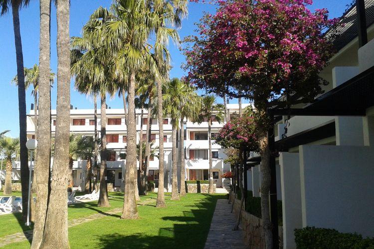 Ferienwohnung Apartamentos Tamarindos Peñiscola (270048), Peñiscola, Costa del Azahar, Valencia, Spanien, Bild 4