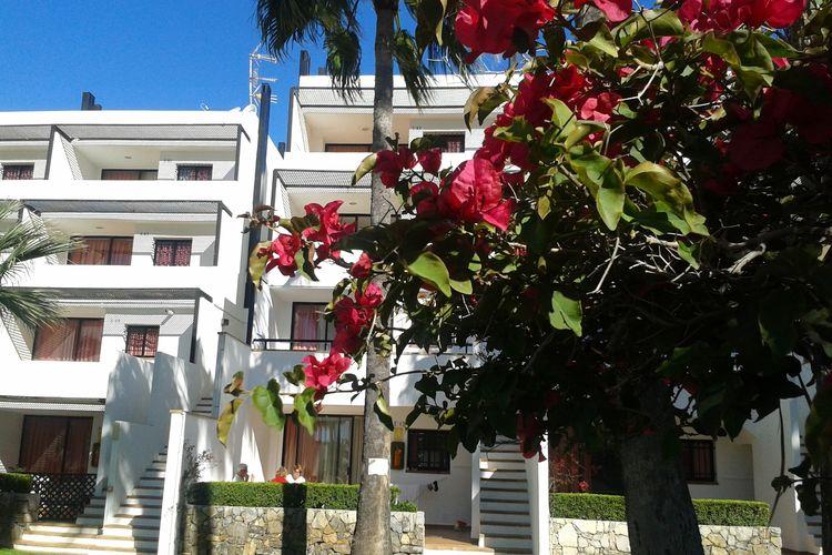Ferienwohnung Apartamentos Tamarindos Peñiscola (270048), Peñiscola, Costa del Azahar, Valencia, Spanien, Bild 3