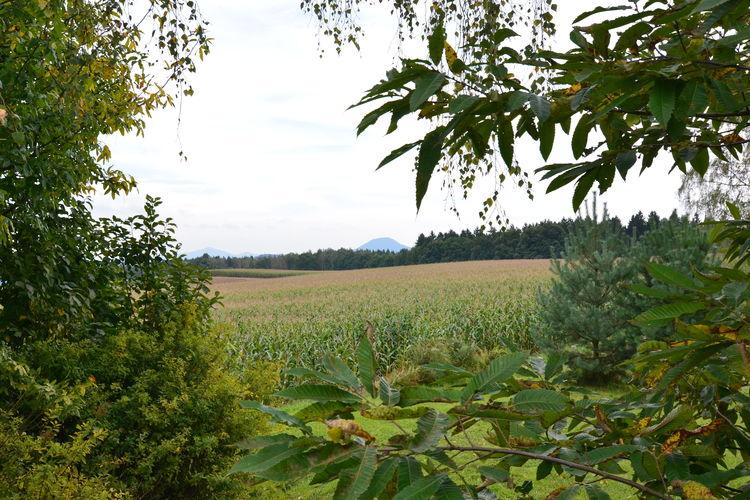 Ferienwohnung Bergblick (277403), Reinhardtsdorf, Sächsische Schweiz, Sachsen, Deutschland, Bild 21