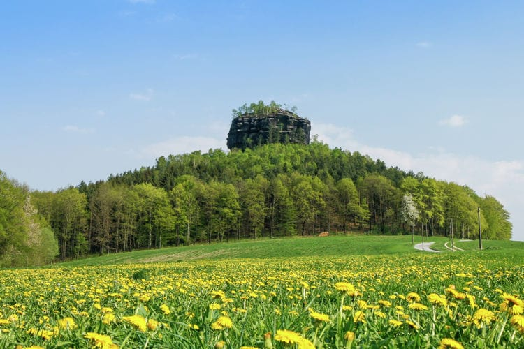 Ferienwohnung Bergblick (277403), Reinhardtsdorf, Sächsische Schweiz, Sachsen, Deutschland, Bild 23
