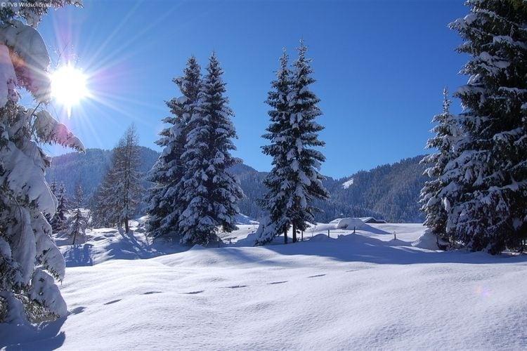Maison de vacances Wildschönau (277307), Wildschönau-Niederau, Hohe Salve, Tyrol, Autriche, image 26