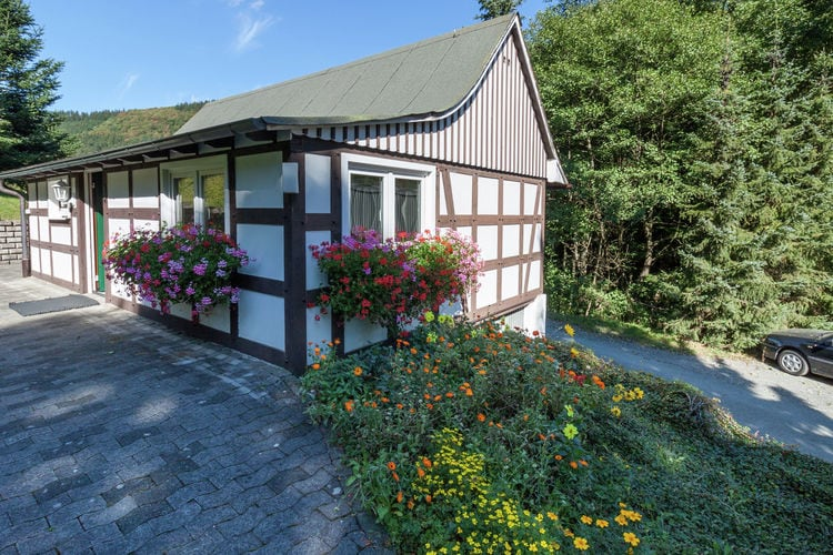 Vakantiehuizen Schmallenberg-Oberkirchen te huur Schmallenberg-Oberkirchen- DE-57392-18   met wifi te huur