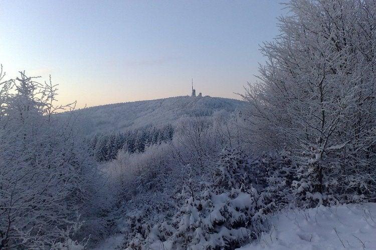 Ferienhaus am Wald (294352), Fischbach, Thüringer Wald, Thüringen, Deutschland, Bild 22