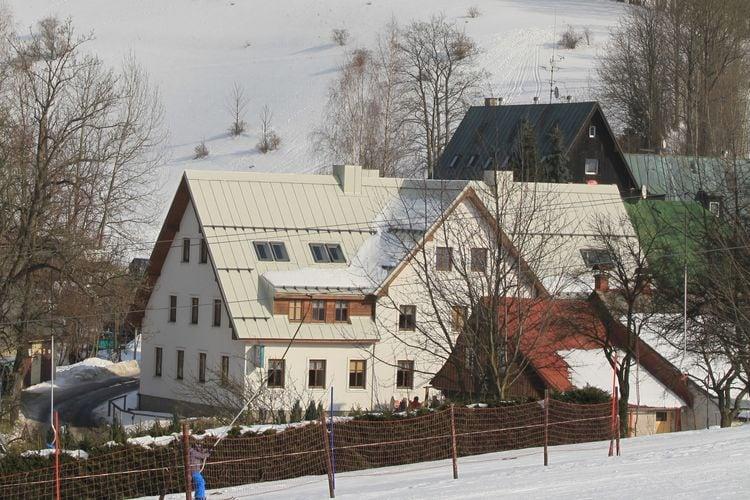 Appartement Tsjechië, Reuzengebergte - Jzergebergte, Rokytnice nad Jizerou Appartement CZ-51244-10