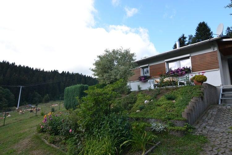 vakantiehuis Duitsland, Thuringen, Piesau vakantiehuis DE-98739-02
