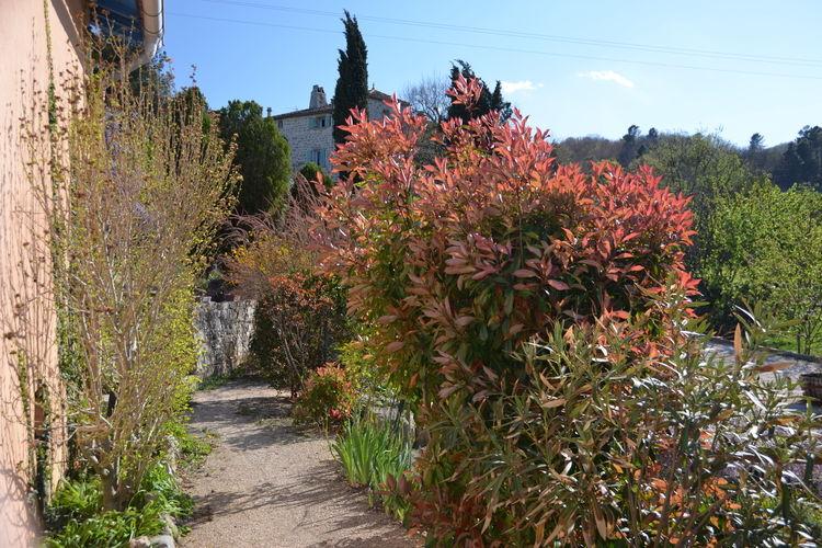 Ferienhaus Courriole (294383), Courry, Gard Binnenland, Languedoc-Roussillon, Frankreich, Bild 5
