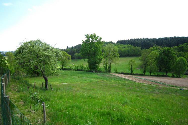 Ferienhaus Maison de vacance - Auvergne (295072), Calvinet, Cantal, Auvergne, Frankreich, Bild 25