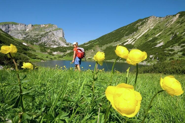 Ferienwohnung Sonnenblick (297561), Reith im Alpbachtal, Alpbachtal & Tiroler Seenland, Tirol, Österreich, Bild 21