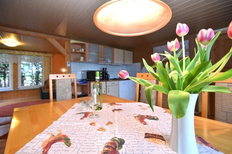 vakantiehuis Duitsland, Saksen, Grünbach vakantiehuis DE-08223-01