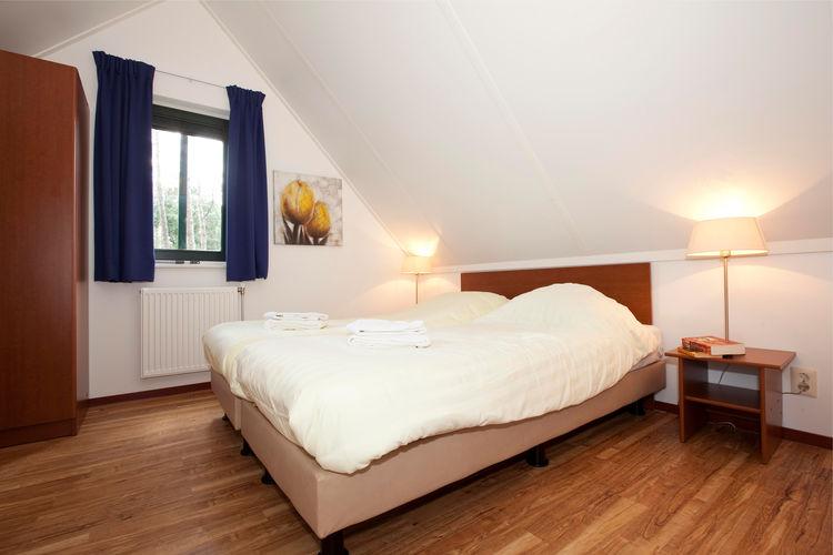 Vakantiewoning Nederland, Drenthe, Borger Chalet NL-9531-03