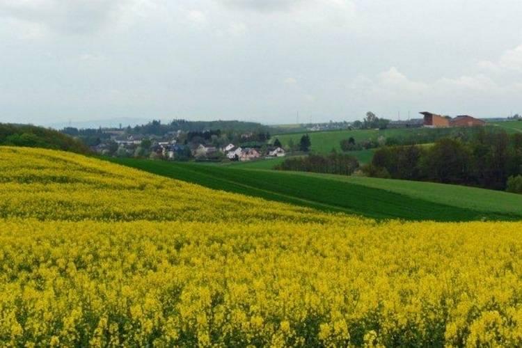 Ferienwohnung Kaifenheimer Mühle (305715), Kaifenheim, Moseleifel, Rheinland-Pfalz, Deutschland, Bild 26