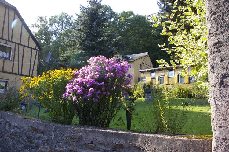 Ferienwohnung Kaifenheimer Mühle (305715), Kaifenheim, Moseleifel, Rheinland-Pfalz, Deutschland, Bild 7