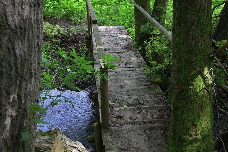 Ferienwohnung Kaifenheimer Mühle (305715), Kaifenheim, Moseleifel, Rheinland-Pfalz, Deutschland, Bild 25