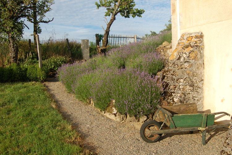 Ferienhaus Fermette Maux (308054), Maux, Nièvre, Burgund, Frankreich, Bild 22