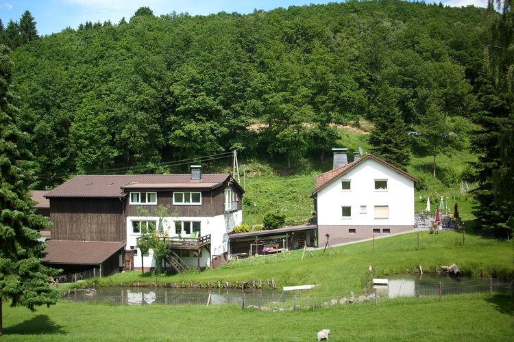 Appartement Duitsland, Sauerland, Lennestadt Appartement DE-57368-04