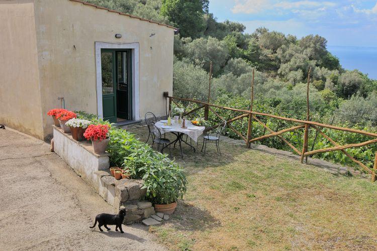 Ferienwohnung Gli Ulivi 2 (307472), Sant'Agnello, Amalfiküste, Kampanien, Italien, Bild 20