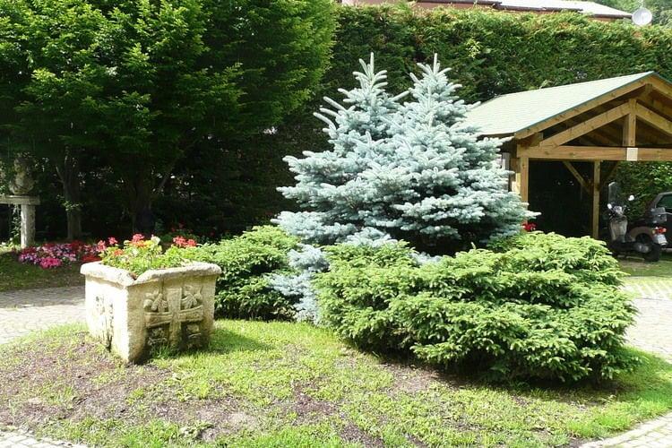 Ferienwohnung Dario Uno (311909), Male', Trentino, Trentino-Südtirol, Italien, Bild 20