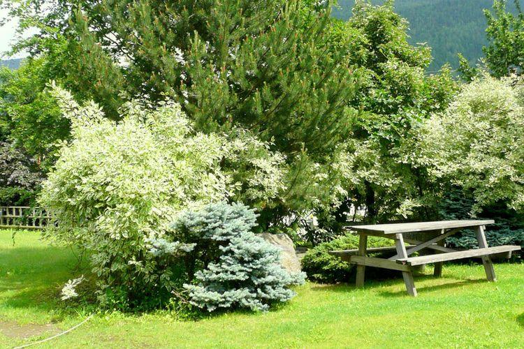 Ferienwohnung Dario Uno (311909), Male', Trentino, Trentino-Südtirol, Italien, Bild 21