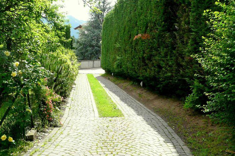 Ferienwohnung Dario Uno (311909), Male', Trentino, Trentino-Südtirol, Italien, Bild 18