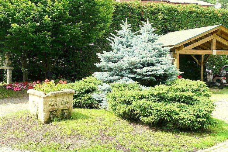 Ferienwohnung Dario Uno (311909), Male', Trentino, Trentino-Südtirol, Italien, Bild 15
