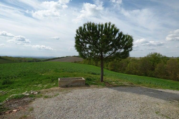 Ferienwohnung Forno (311912), Castelnuovo Berardenga, Florenz - Chianti - Mugello, Toskana, Italien, Bild 34