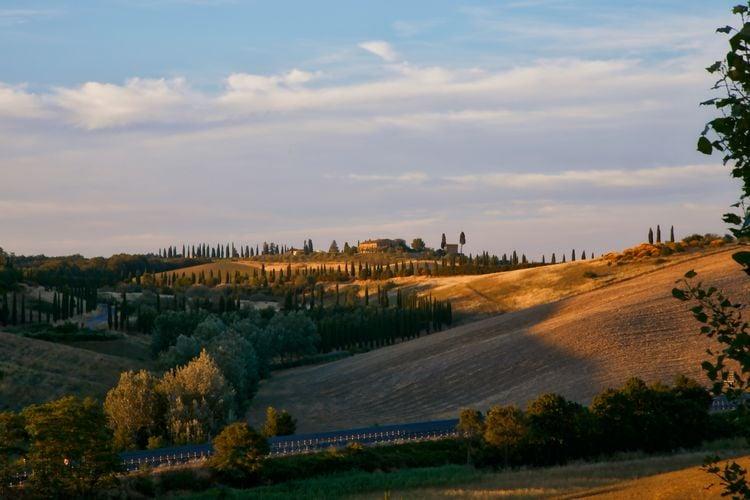 Ferienwohnung Stalla Verde (314533), Castelnuovo Berardenga, Florenz - Chianti - Mugello, Toskana, Italien, Bild 37