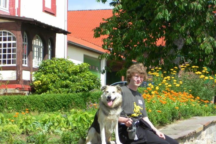 Ferienwohnung Am Ferienhof (317147), Trendelburg, Nordhessen, Hessen, Deutschland, Bild 17