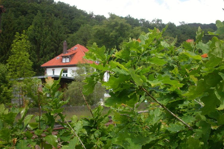 Mansion Hesse