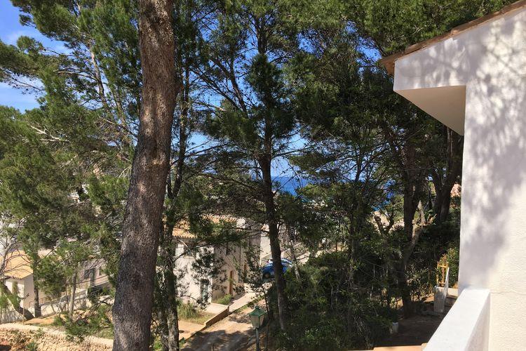 Holiday house 10 Ca'n Botana (317702), Pollença, Majorca, Balearic Islands, Spain, picture 22