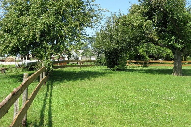 Ferienhaus Gruppenhaus Barthel (334221), Ammeldingen bei Neuerburg, Südeifel, Rheinland-Pfalz, Deutschland, Bild 34