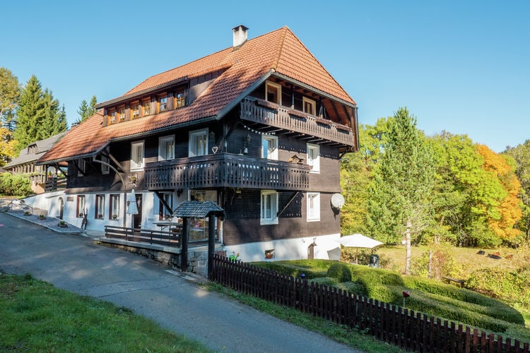 Appartement  met wifi  Dachsberg  Altes Forsthaus